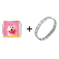 Items from KS - pink poodle combination Image.