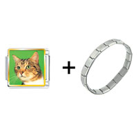 Items from KS - green eyed cat combination Image.