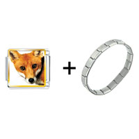 Items from KS - red fox combination Image.
