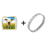 Items from KS - sheep face combination Image.