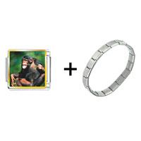 Items from KS - funny monkey combination Image.