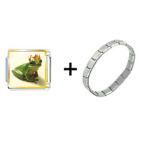 Items from KS - frog prince combination Image.