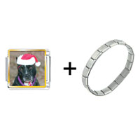 Items from KS - christmas dog combination Image.