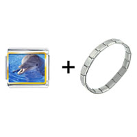 Items from KS - smiling dolphin combination Image.
