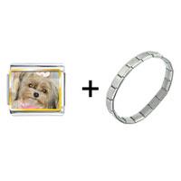 Items from KS - shih tzu dog combination Image.