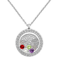 Silver Round Shape Butterfly Wafer Colorful Birthstones Memory Living Locket Necklace