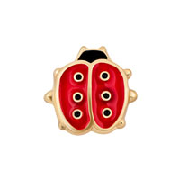 Jewelry Floating Memory Living Locket Red Black Golden Ladybird Charm