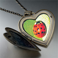 Necklace & Pendants - red ladybug large photo heart locket pendant necklace Image.