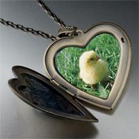 Necklace & Pendants - baby chick photo large heart locket pendant necklace Image.