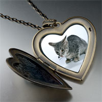 Necklace & Pendants - kitten cat photo large heart locket pendant necklace Image.
