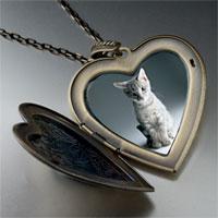 Necklace & Pendants - kitty portrait large photo heart locket pendant necklace Image.