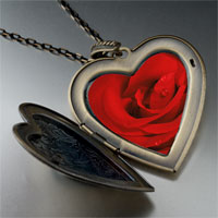 Necklace & Pendants - dew drop rose large photo heart locket pendant necklace Image.