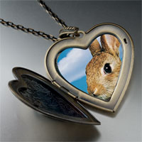 Necklace & Pendants - alert bunny rabbit large photo heart locket pendant necklace Image.