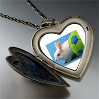 Necklace & Pendants - soccer bunny rabbit large photo heart locket pendant necklace Image.