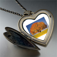 Necklace & Pendants - tree in autumn large photo heart locket pendant necklace Image.