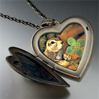 Necklace & Pendants - squirrel clover large heart locket pendant necklace Image.