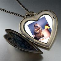 Necklace & Pendants - tropical squirrel large heart locket pendant necklace Image.