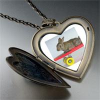Necklace & Pendants - bunny skateboarder large heart locket pendant necklace Image.