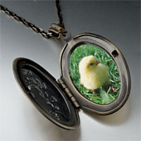 Necklace & Pendants - baby chick photo photo locket pendant necklace Image.