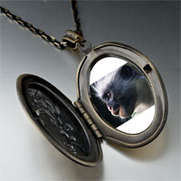 Necklace & Pendants - friendly monkey photo locket pendant necklace Image.