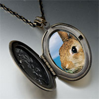 Necklace & Pendants - alert bunny rabbit photo locket pendant necklace Image.