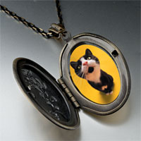 Necklace & Pendants - cat yawning photo locket pendant necklace Image.