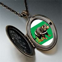 Necklace & Pendants - racoon photo italian pendant necklace Image.