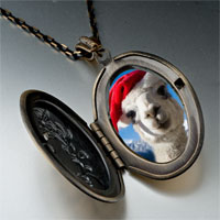 Necklace & Pendants - llama photo italian pendant necklace Image.