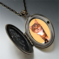 Necklace & Pendants - peek a boo cat pendant necklace Image.