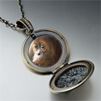 Necklace & Pendants - goofy monkey photo locket pendant necklace Image.
