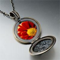 Necklace & Pendants - orange daisy photo locket pendant necklace Image.
