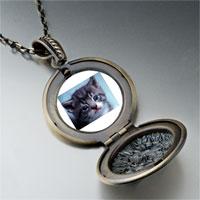 Necklace & Pendants - grey kitty photo locket pendant necklace Image.