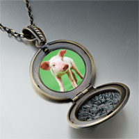 Necklace & Pendants - pig photo pendant necklace Image.