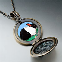 Necklace & Pendants - wildlife dutch rabbit photo pendant necklace Image.
