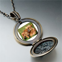 Necklace & Pendants - animal cub photo pendant necklace Image.