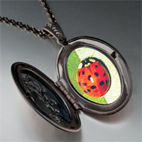 Necklace & Pendants - red ladybug photo locket pendant necklace Image.