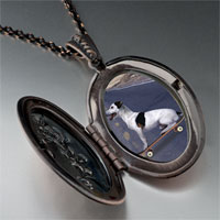 Necklace & Pendants - skateboarding dog photo locket pendant necklace Image.