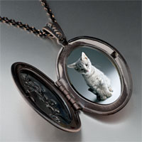 Necklace & Pendants - kitty portrait photo locket pendant necklace Image.