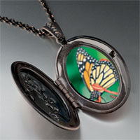 Necklace & Pendants - butterfly close up photo locket pendant necklace Image.