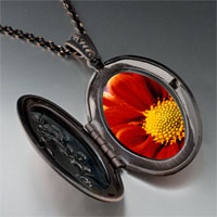 Necklace & Pendants - orange daisy photo locket pendant necklace Image.