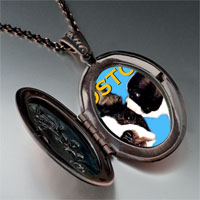 Necklace & Pendants - boston terrier photo italian pendant necklace Image.