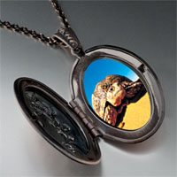 Necklace & Pendants - desert turtle pendant necklace Image.