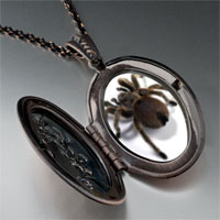 Necklace & Pendants - deadly spider pendant necklace Image.