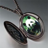 Necklace & Pendants - panda bear photo pendant necklace Image.