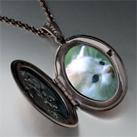 Necklace & Pendants - little kitten pendant necklace Image.