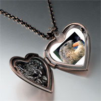 Necklace & Pendants - squirrel eating carrot animal heart locket pendant necklace Image.