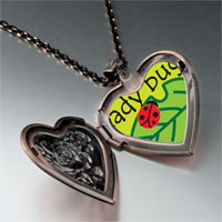 Necklace & Pendants - lady bug on leaf heart locket pendant necklace Image.