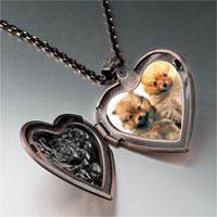 Necklace & Pendants - chow twins heart locket pendant necklace Image.