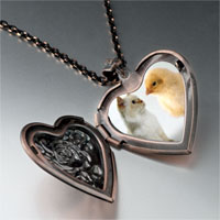 Necklace & Pendants - chick kitten heart locket pendant necklace Image.