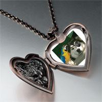 Necklace & Pendants - pirate dog heart locket pendant necklace Image.